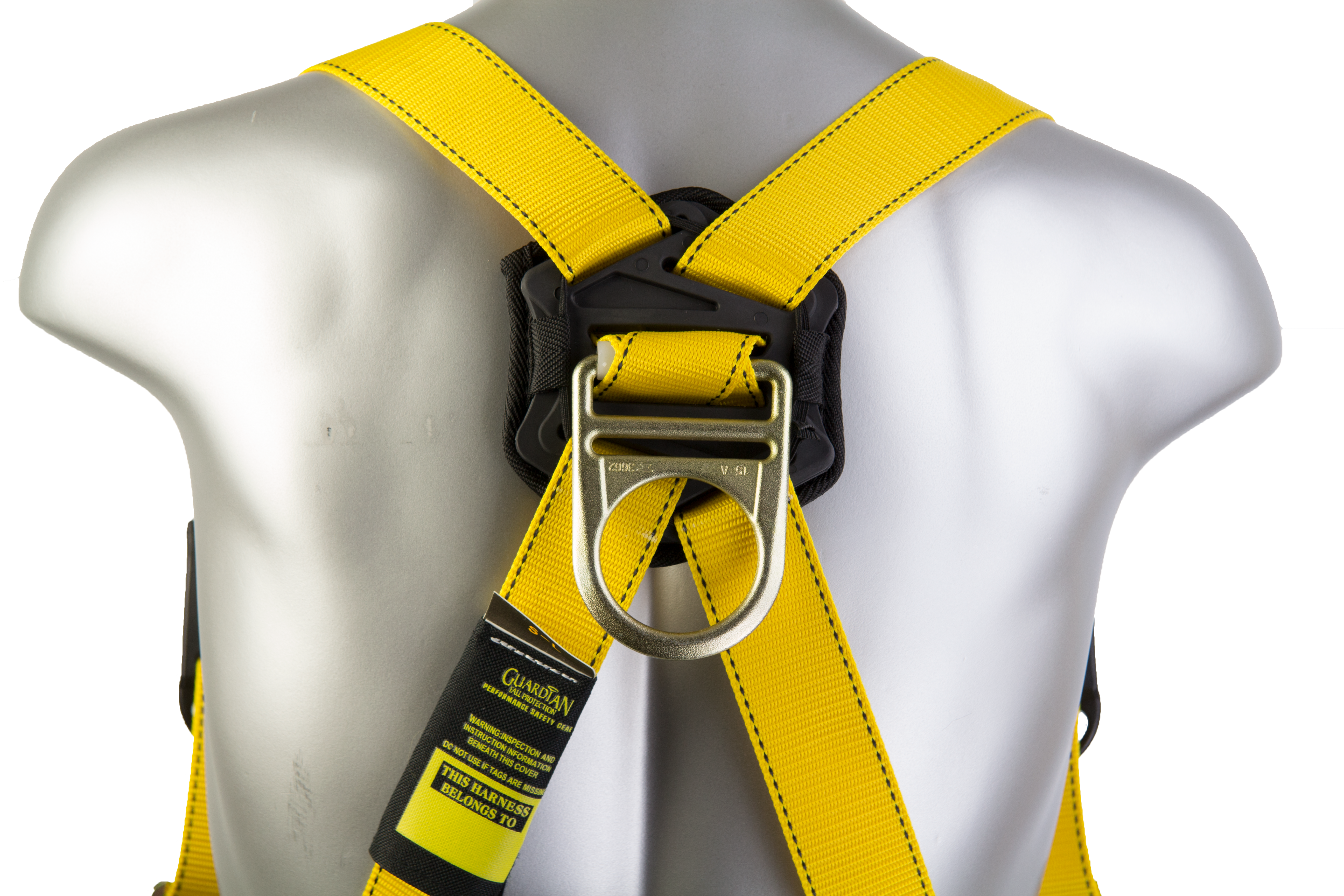 Velocity Harness, Back D-Ring